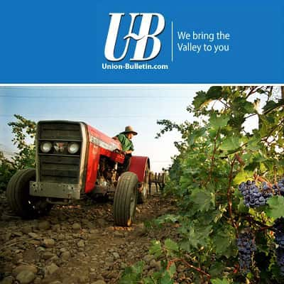 Union Bulletin ~ Wine from stone