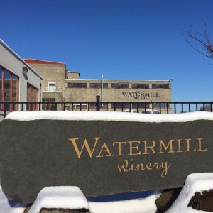 Watermill Estate Vineyard